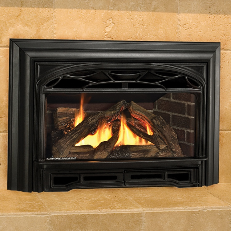 Propane Gas Log Fireplace Inserts Fireplaces The Fyre