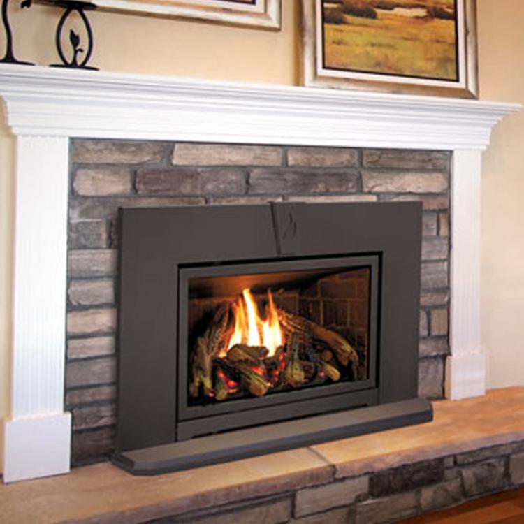 Valor G3, Gas, Fireplace Insert - Fergus Fireplace